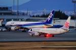 うらしまさんが、高松空港で撮影したチャイナエアライン 737-809の航空フォト(写真)