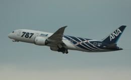 nagareboshiさんが、伊丹空港で撮影した全日空 787-881の航空フォト(写真)