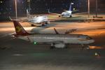 熊五郎~さんが、羽田空港で撮影した天津航空 A320-232の航空フォト(写真)