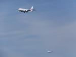 パピヨンさんが、羽田空港で撮影したJALエクスプレス 737-846の航空フォト(写真)