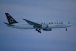 セブンさんが、新千歳空港で撮影したアシアナ航空 767-38Eの航空フォト(写真)