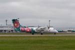 Maestroさんが、稚内空港で撮影したエアーニッポンネットワーク DHC-8-314Q Dash 8の航空フォト(写真)