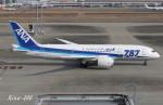 RINA-200さんが、羽田空港で撮影した全日空 787-881の航空フォト(写真)