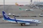 camelliaさんが、中部国際空港で撮影した全日空 737-781の航空フォト(写真)