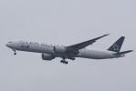 HEATHROWさんが、成田国際空港で撮影した全日空 777-381/ERの航空フォト(写真)