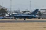夏みかんさんが、名古屋飛行場で撮影した航空自衛隊 F-2Aの航空フォト(写真)