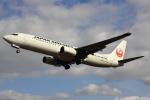 こだしさんが、伊丹空港で撮影した日本航空 737-846の航空フォト(写真)