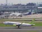 flyflygoさんが、羽田空港で撮影したソラシド エア 737-81Dの航空フォト(写真)