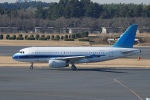 pringlesさんが、成田国際空港で撮影したユナイテッド航空 A319-132の航空フォト(写真)