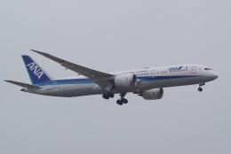 HEATHROWさんが、成田国際空港で撮影した全日空 787-9の航空フォト(写真)