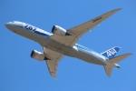 まえちゃさんが、成田国際空港で撮影した全日空 787-881の航空フォト(写真)