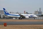 23approachさんが、伊丹空港で撮影した全日空 787-881の航空フォト(写真)