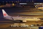 camelliaさんが、中部国際空港で撮影した日本航空 737-846の航空フォト(写真)