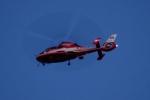 木人さんが、千葉市で撮影した千葉市消防航空隊 AS365N3 Dauphin 2の航空フォト(写真)
