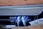 we love kixさんが、関西国際空港で撮影したスターフライヤー A320-214の航空フォト(写真)