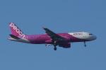 HEATHROWさんが、成田国際空港で撮影したピーチ A320-214の航空フォト(写真)