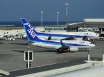 よんすけさんが、那覇空港で撮影した全日空 737-781の航空フォト(写真)