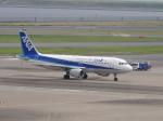 flyflygoさんが、羽田空港で撮影した全日空 A320-211の航空フォト(写真)