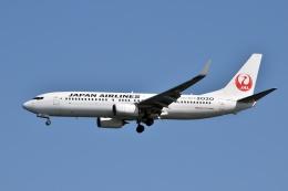 sonnyさんが、羽田空港で撮影した日本航空 737-846の航空フォト(写真)