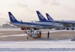 comdigimaniaさんが、函館空港で撮影した全日空 737-881の航空フォト(写真)