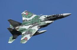 soiwbusさんが、茨城空港で撮影した航空自衛隊 F-15DJ Eagleの航空フォト(写真)