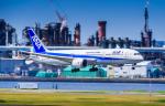 KENTARO (LOCAL)さんが、羽田空港で撮影した全日空 787-9の航空フォト(写真)