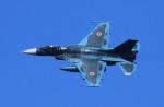 VIPERさんが、岐阜基地で撮影した航空自衛隊 F-2Aの航空フォト(写真)