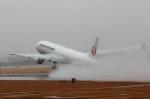 青春の1ページさんが、伊丹空港で撮影した日本航空 777-346の航空フォト(写真)