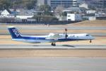 水月さんが、伊丹空港で撮影したANAウイングス DHC-8-402Q Dash 8の航空フォト(写真)