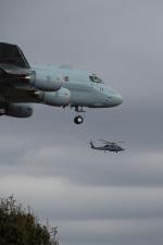 ほーねっともきさんが、厚木飛行場で撮影したアメリカ海軍 S-70 (H-60 Black Hawk/Seahawk)の航空フォト(写真)