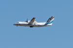 コージーさんが、成田国際空港で撮影した海上保安庁 DHC-8-315Q MPAの航空フォト(写真)