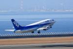 せせらぎさんが、中部国際空港で撮影したANAウイングス 737-54Kの航空フォト(写真)