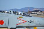 ja0hleさんが、名古屋飛行場で撮影した航空自衛隊 F-4EJ Kai Phantom IIの航空フォト(写真)
