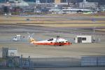 ja0hleさんが、名古屋飛行場で撮影した海上自衛隊の航空フォト(写真)