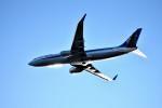 we love kixさんが、関西国際空港で撮影した全日空 737-881の航空フォト(写真)