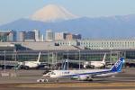 せぷてんばーさんが、羽田空港で撮影した全日空 787-881の航空フォト(写真)