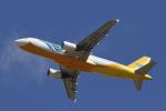 とらとらさんが、成田国際空港で撮影したセブパシフィック航空 A320-214の航空フォト(写真)