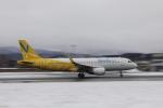 Tomochanさんが、函館空港で撮影したバニラエア A320-214の航空フォト(写真)