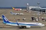 camelliaさんが、中部国際空港で撮影した全日空 737-881の航空フォト(写真)