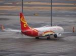 51ANさんが、羽田空港で撮影した海南航空 737-84Pの航空フォト(写真)