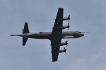 NFファンさんが、厚木飛行場で撮影した海上自衛隊 UP-3Cの航空フォト(写真)