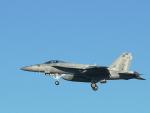 なまくら はげるさんが、厚木飛行場で撮影したアメリカ海軍 F/A-18E Super Hornetの航空フォト(写真)
