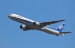 nishisanさんが、羽田空港で撮影した全日空 777-381の航空フォト(写真)
