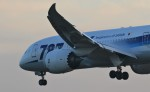 nishisanさんが、成田国際空港で撮影した全日空 787-881の航空フォト(写真)