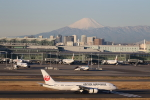 buntaroさんが、羽田空港で撮影した日本航空 787-846の航空フォト(写真)