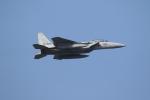 ダービーさんが、那覇空港で撮影した航空自衛隊 F-15DJ Eagleの航空フォト(写真)