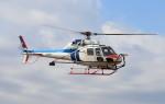 ヘリオスさんが、東京ヘリポートで撮影した中日本航空 AS355F2 Ecureuil 2の航空フォト(写真)