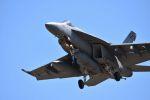 Duffさんが、厚木飛行場で撮影したアメリカ海軍 F/A-18E Super Hornetの航空フォト(写真)