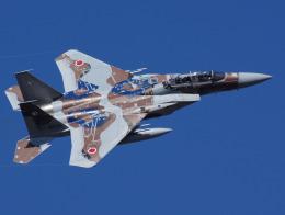 Willieさんが、茨城空港で撮影した航空自衛隊 F-15DJ Eagleの航空フォト(写真)