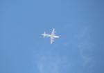 Koenig117さんが、名古屋飛行場で撮影した海上自衛隊 UP-3Cの航空フォト(写真)
